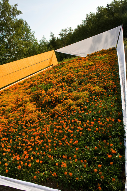 Dossier de presse | 837-09 - Communiqué de presse | Call for proposals - International Garden Festival 2015 - International Garden Festival / Reford Gardens - Landscape Architecture - Orange Secret by Nomad Studio, New York, United States - Crédit photo : Marjelaine Sylvestre