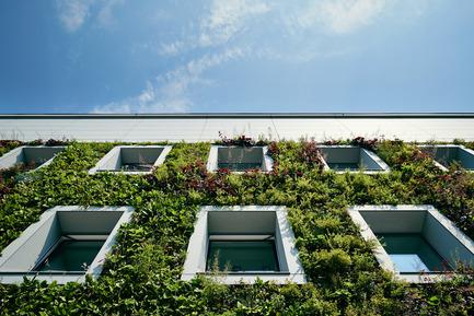 Press kit | 1139-03 - Press release | Foundation for Polish Science Headquarters - FAAB Architektura - Commercial Architecture - Front elevation detail of green wall and&nbsp;window rhythm<br> - Photo credit: Bartłomiej Senkowski © FAAB Architektura