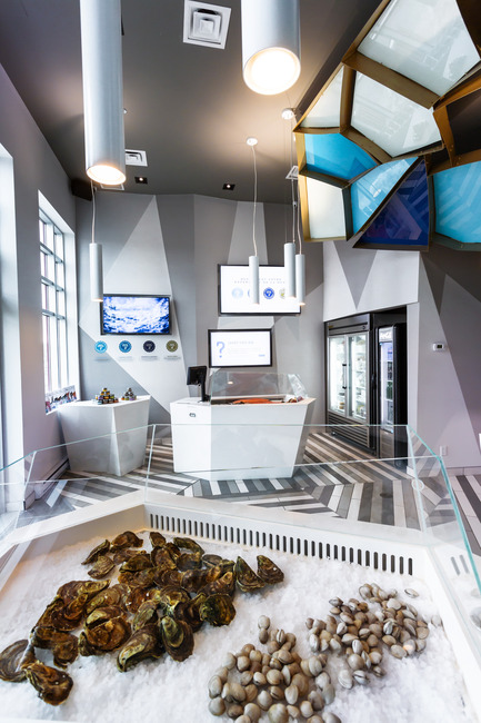 Dossier de presse | 760-10 - Communiqué de presse | Reinventing a walk on the bottom of the sea - Jean de Lessard, Designers Créatifs - Commercial Interior Design - Glass case details - Crédit photo : Imagicom, Francois Laliberté