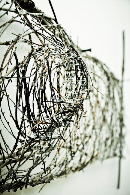 Dossier de presse | 1116-01 - Communiqué de presse | D'une branche à l'autre - Danielle Carignan - Art - Crédit photo : Danielle Carignan/Annie Lachapelle