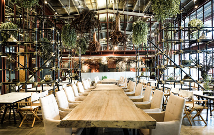 Dossier de presse | 1972-01 - Communiqué de presse | 'Vivarium' - A Tractor Warehouse Turned Restaurant by Hypothesis Won the INSIDE Award 2015 - Hypothesis - Commercial Interior Design - The main dining area - Crédit photo :  Hypothesis