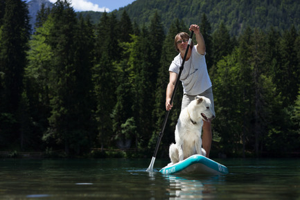Press kit | 1857-01 - Press release | SipaBoards Bring Fresh Air To Paddleboarding - SipaBoards - Product - Dogs love it too - Photo credit: Uros Podlogar