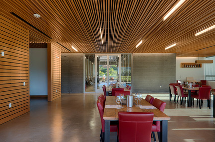 Press kit | 2039-01 - Press release | Titus Vineyards - MH Architects - Industrial Architecture -     The suspending ceiling of the Hospitality Room is comprised of long horizontal slats of varied widths and depths with a view of the Fermentation Room through the glass wall beyond. Glass blade LED light fixtures hang between the slats in a staggered composition. The slatted ceiling mitigates acoustical resonance and allows for flexible ventilation.    - Photo credit:  Technical Imagery Studios