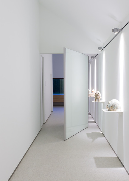 Press kit | 2163-01 - Press release | Pivoting Room Divider - ANYWAY doors - Product - Modern glass pivot door with offset axis pivoting hinge - Photo credit: ANYWAYdoors - Photographer Koen Dries