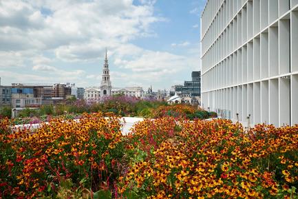 Dossier de presse | 2337-01 - Communiqué de presse | One New Ludgate - Fletcher Priest Architects - Commercial Architecture - The 5th floor roof terrace - Crédit photo : Timothy Soar