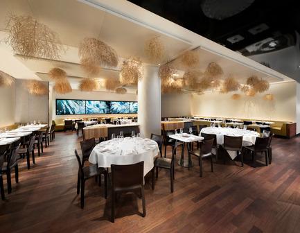 Dossier de presse | 1048-11 - Communiqué de presse | +tongtong Renovates the Famed Restaurant, Nota Bene in Downtown Toronto - +tongtong - Commercial Interior Design - Crédit photo : Lisa Petrole