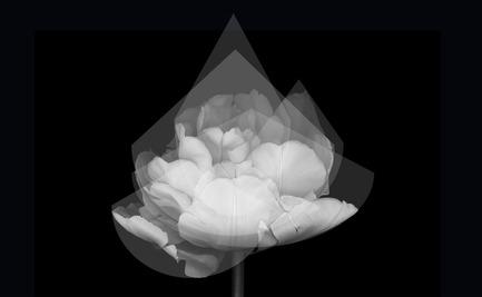 Press kit | 2489-01 - Press release | inMOOV - Studio Nina Lieven - Lighting Design - Study for inMOOV - Photo credit: Nina Lieven 2016