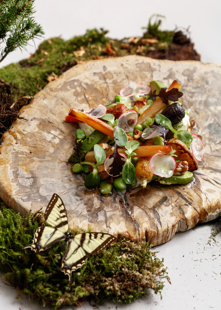 Press kit | 2065-02 - Press release | Botanist Restaurant to Open its Doors on April 24 in Vancouver, BC - Fairmont Pacific Rim - Lifestyle - Botanist - Root Vegetables - Photo credit: Ian Lanterman