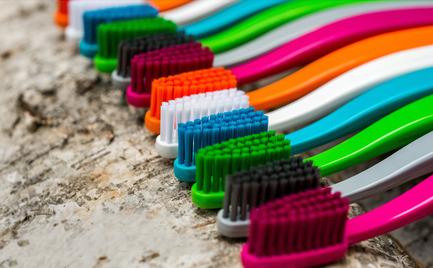 Press kit | 2482-01 - Press release | biobrush - The Biodegradable Toothbrush from Berlin - biobrush GmbH - Product - biobrush - Photo credit: Thomas Zipf