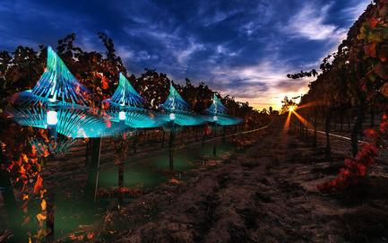Dossier de presse | 2121-06 - Communiqué de presse | Seismic Electromagnetic Induction LED - Margot Krasojević Architects - Design d'éclairage - Seismic LED in vineyard context - Crédit photo : Margot Krasojević