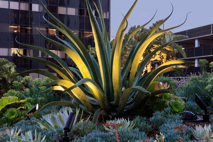 Press kit - AHBE Landscape Architects Unveils Healing Gardens for