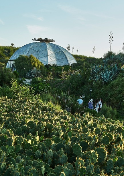 Dossier de presse | 3092-01 - Communiqué de presse | Cactus Park in Taiwan Draws Architectural Inspiration from Prickly Succulents - CCL Architects & Planners - Landscape Architecture - Echinocactus grusonii cactus greenhouse and envirement - Crédit photo : CCL Architects & Planners