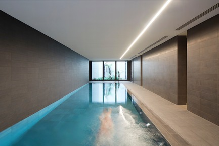 Press kit | 2317-01 - Press release | A New Oasis Off London's Oxford Street - Make Architects - Residential Architecture - Residents swimming pool overlooking a palm garden - Photo credit: Make Architects