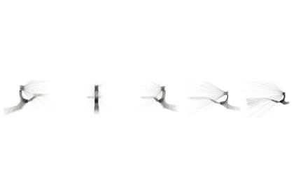 Dossier de presse | 865-33 - Communiqué de presse | Un deuxième prix prestigieux reconnaissant l'excellence de la conceptualisation architecturale à l'Oratoire Saint-Joseph du Mont-Royal - Lemay - Concours - Diagramme -Oratoire Saint-Joseph du Mont-Royal - Crédit photo : Lemay