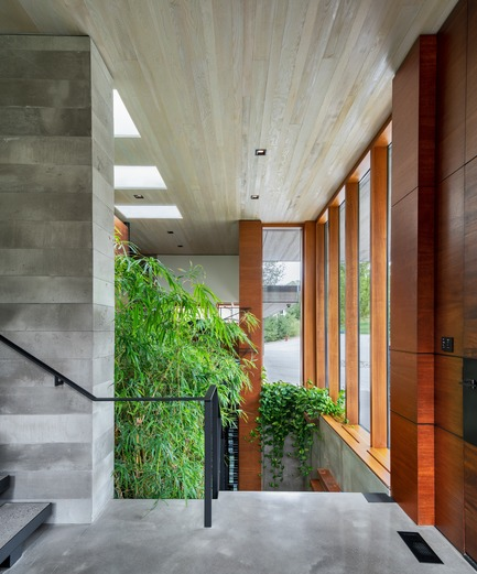 Press kit | 3300-02 - Press release | Petaluma House - Trevor McIvor Architect Inc - Residential Architecture - Entrance hallway looking down at feature stair leading to lower level. Double-height space filled with natural daylight and natural bamboo plants. - Photo credit: Adrian Ozimek