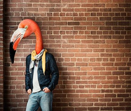 Dossier de presse | 1038-01 - Communiqué de presse | Lofts authentiques, condos urbains Le Nordelec Superbes nids pour oiseaux rares - Elad Canada - Immobilier - Crédit photo : 2012 Condos Nordelec