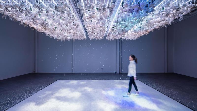 "Dossier de presse | 3160-06 - Communiqué de presse | Frame Awards 2020 Nominees Announced - Frame - Concours - The Art of Bloom - Exhibition of the Year<br style=""""> - Crédit photo : Daikoku Design Institute<br style="""">"