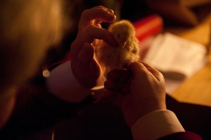 Dossier de presse | 962-01 - Communiqué de presse | La folie de Charles, sa table et ses hôtes - Charles Kaisin - Produit - Joli Poussin - Crédit photo : Marie-Françoise Plissart