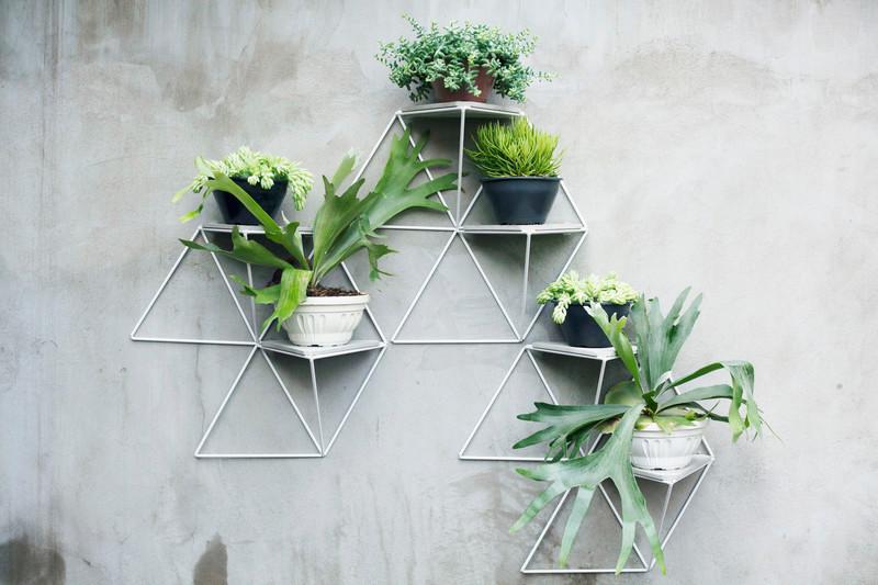 Press kit - Press release - Garden Modules by Luisa+Lilian Parrado - Luisa + Lilian Parrado